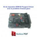 Kit réparation BSM Peugeot Citroen