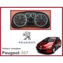 Testeur tableau compteur Peugeot 307